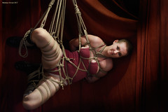 Draped in Ropes (naturalturn) Tags: rope bite munch ropebite bondage tied bound shibari kinbaku woman female femalebondage ropeharness harness hemprope suspension sideways side sidesuspension handtie boxtie legtie futomomo red peachy wickedgrounds sanfrancisco california usa image:rating=4 image:id=226461