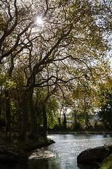 Seuil de Naurouze, Aude (lyli12) Tags: canaldumidi eau aude paysage landscape languedocroussillon automne autumn lauragais france nikon d7000