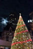 DSC_5368.jpg (snedex) Tags: christmastree fullmoon oldcityhall nathanphilipssquare christmasfair