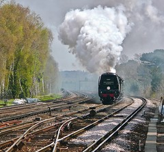 Free Rein (Deepgreen2009) Tags: bulleid tangmere fast climbing working steam uksteam brookwood pacific battleofbritain spamcan special cathedralsexpress