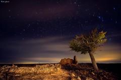Tree Night in autumn (Peideluo) Tags: starts clouds sky noctografia landscapenight longexposure autumn tree night cielo árbol paisaje nikonflickraward elitegalleryaoi bestcapturesaoi aoi