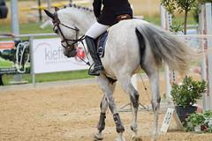 _MG_6365 (dreiwn) Tags: ridingarena reitturnier reiten reitplatz reitverein reitsport ridingclub equestrian showjumping springreiten horse horseback horseriding horseshow pferdesport pferd pony pferde tamronsp70200f28divcusd