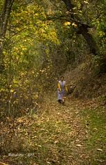 en el camino... (_DSC6630) (Rodo López) Tags: personas perro paseos otoño españa elbierzo explore excapture elcampo spain sentimientos castillayleonesvida costumbrestradicionespueblos nikon nature naturaleza naturalezacautivadora nostalgia naturebynikon