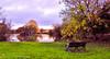 Autumn (Francesco Impellizzeri) Tags: brighton england uk pond canon landscape bench autumn water reflections