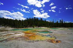Yellow & orange & green & ..., Yellowstone NP, USA (Andrey Sulitskiy) Tags: usa yellowstone wyoming