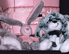 Toys (Linnea from Sweden) Tags: toy bunny bunnies teddy plush sweet lovely
