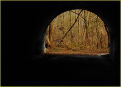171202 Pomona Mills Park (15) (Aben on the Move) Tags: pomonamillspark toronto thornhill ontario canada park nature