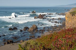 Chasing the Waves Along Sonoma Coast 7