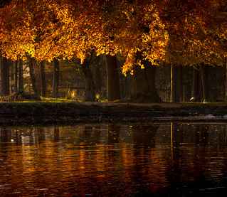 Autumn Evening Reflections