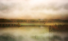 Angler (augustynbatko) Tags: angler lake autumn fog mist nature landscape pier birds sky clouds fishermann fisherman