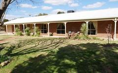 17 Tecoma St, Leeton NSW