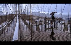 Contemplating (Nico Geerlings) Tags: ngimages nicogeerlings nicogeerlingsphotography brooklyn brooklynbridge pedestrianwalkway newyorkcity nyc ny usa rain hurricane raining rainy manhattan reflection reflections