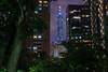 Hi Taipei101! (703) Tags: elephantmountain pentaxk3ii sigma1020mm sigma1020mmf35 sigmalens taipei taipei101 taiwan xiangshan cityscape night nightscape nightscene nightview travel widelens 台北 台北101 台湾 夜 夜景 旅行 象山 tokyo japan
