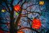Christmas tree (Maria Eklind) Tags: tree himmel paket hearts sky reflection spegling city sweden träd evening gustavadolfstorg malmö skånelän sverige se