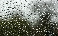 Normal weather service has resumed (SteveJM2009) Tags: rain raindrops glass pane water garden dof focus droplets light shadow upavon wilts wiltshire uk stevemaskell 2017 december