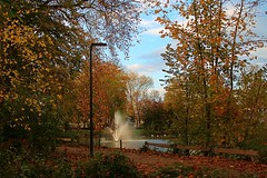 A Walk In The Park (Daphne-8) Tags: farben colors colours colores autumn herbst trees bäume arbres arboles otoño autunno outono árvores bomen herfst kleuren forest estanque étang bassin stagno lagoa vijver pond water aqua agua wasser park