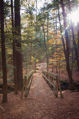 Across the bridge (lilredlizzie) Tags: nature outdoors outside leaves foliage fall autumn newengland canon canon6d canon2470l newhampshire mood perspective sun