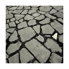 different (Bernhardt Franz) Tags: different stone cobblestone blackandwhite bw floor verschieden stein weg street anders hell dunkel zwischenraum anliegend interspace pattern muster unterschied