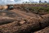 DESMATAMENTO FOTO PAULO SANTOS (Agência Amazônia Real) Tags: carvoarias meioambiente amazônia devastação pará ulionópolis trabalhoescravo sustentabilidade carvãocarvoariatrabalhoescravo desmatamentoexploraçãomadereirasustentabilidademeioamb brasil desmatamentoexploraçãomadereirasustentabilidademeioambienteparáarcodefogoamazônia