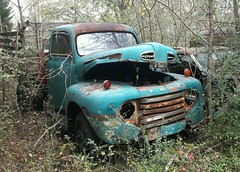 Turquoise and rust, Old Car City (sherri_lynn) Tags: oldtruck truck rusted rusty junkyard junk abandoned oldcarcity oldtrucks ford fordtruck whitega georgia ruralsouth ruralgeorgia
