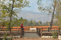 (Marwanhaddad) Tags: landscape nature bicycle autumn