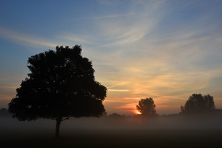 Come the dawn  -(Selected by GETTY IMAGES)