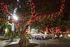 SanTelmo, luces de Navidad (Promoción de Las Palmas de Gran Canaria) Tags: cultura lpacultura visit lpavisit turismo lpaturismo navidad lucesnavideñas alumbradonavideño laspalmasdegrancanaria vegueta triana santelmo