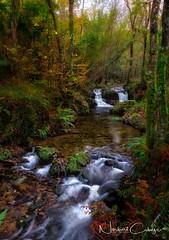 El Viaje.. (Norbert Cabeza Llanes) Tags: asturias paisaje paraiso natural montaña rio river turismo rural viajar landscape llanes water agua h2o aire libre vivir nature