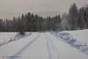 20171129001058 (koppomcolors) Tags: koppomcolors snö snow winter vinter värmland varmland sweden sverige scandinavia skog forest
