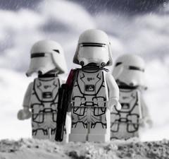 Snowtrooper Squadron on patrol (Jezbags) Tags: lego snow trooper patrol starwars legos toy toys troopers stormtrooper stormtroopers gun canon60d canon 60d 100mm closeup upclose snowing macro macrophotography macrodreams macrolego