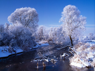 Winter on the river Nida