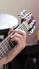 Dale (Patrick Morrissey Photography) Tags: musicians dale guitar people music portrait