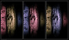 Triptych II - Masks of Equanimity (theReedHead) Tags: thereedhead milwaukeephotographers wisconsinphotographers olympusem5ii olympus1240mmf28 olympuszoomlens olympuscameras triptych closeups anthropomorph anthropomorphic anthropomorphism abstract abstraction masks