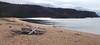 SERENE SCENE, JOANNIE CLEMENT PHOTO ( edited ACA PHOTO) (alexanderrmarkovic) Tags: joannieclementphoto lakesuperior driftwoodbeach ontario canada editedacaphoto