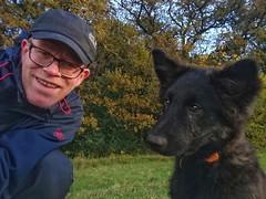Hello dear friends 🍁 🐶🍂 (Jos Mecklenfeld) Tags: dutchshepherd dutchshepherddog shepherddog shepherd dog puppy selfie autumn fall hollandseherdershond hollandseherder herder herdershond hond herfst herbst schäferhund hund sonyxperiaz5 xperia