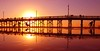 Land Of The Giants.... (law_keven) Tags: usa orangecounty pacificocean ocean pacific sun light colours silhouettes water sea photogrpahy landscapephotography holiday vacation roadtrip reflections america newportbeach beach pier newportbeachpier