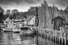Harbor - BW