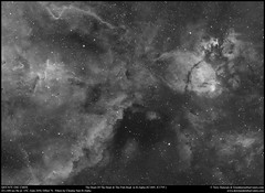 The Heart Of The Heart and Fish Head Nebulae in H-Alpha (Terry Hancock www.downunderobservatory.com) Tags: qhy qhy367c universetoday sky space astronomy astrophotography astroimaging cosmos