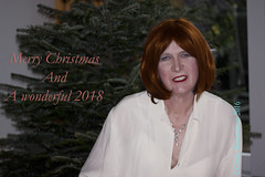 To all my Flickr Friends . . . . . . (cindy richardson) Tags: christmas xmas newyear transgender tgirl crossdress redhead cremecolored silk blouse
