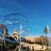 RFFK2409 (Claudiasotophotography) Tags: ciutadella barcelona parque burbuja azul palmera fuente