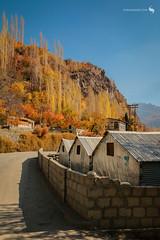 Hunza Valley (hisalman) Tags: hunza valley northern pakistan trees hut autumn travel tourism