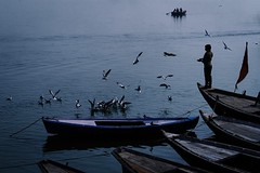INDIA (kuon0930) Tags: india incredibleindia ganga gangariver travel photography dawn sunrise rajaghat varanasi trip lonelyplant tripadvisor