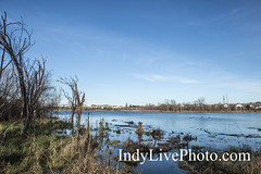 Celery Bog Nature Area - West Lafayette Indiana (Indy Live Photography) Tags: lafayette autumn bog fall forest indiana nature plants shore swamp trails trees water waterways westlafayette