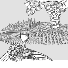 Wine barrel grapes and landscape Illustration (Hebstreits) Tags: aged alcohol art background barrel bottle bunch cask cheese clusters collection culture drawing drawn drink fruit glass grape hand illustration landscape leaf making old pattern retro ripe set sketch tradition traditional vector vine vineyard vintage white wine winery wood wooden