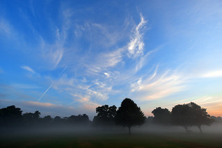 Morning has broken  -  (Selected by GETTY IMAGES)