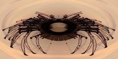 Speider Krän'... (diezin) Tags: abenddämmerung abendhimmel abendlicht abendrot abendsonne abendstimmung bootsfahrt hafen hafenrundfahrt kodak kran kräne rostock sonnenuntergang warnemünde löschen diezin flickr experiment fotomontage montage basteln bastelei polarkoordinaten pixpro az421 kodakpixproaz421