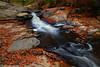 JumpingFish+1_9869_TCW (nickp_63) Tags: autumn fall nature long exposure leaves boulders jumping fish falls raven rock state park lillington north carolina nc waterfall rapids creek river water