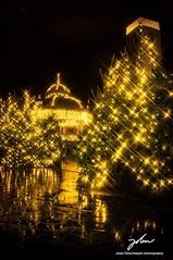 Star light (jolandeschepper) Tags: ostend flandres vlaanderen belgium wanderlust reflection light lights wapenplein christmas oostende