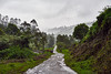 Long long way. (hadogumu) Tags: sony alpha a7rii a7rm2 zeiss fe55f18za sel55f18z 55mm travel munnar kerala india hike 印度