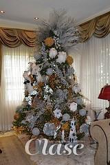 Pinos, los protagonistas de la Navidad